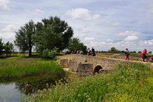 Ruta Encina de Ruli - Senda verde río Záncara.16