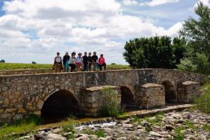 Ruta Encina de Ruli - Senda verde río Záncara.13
