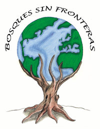 bosques sin fronteras