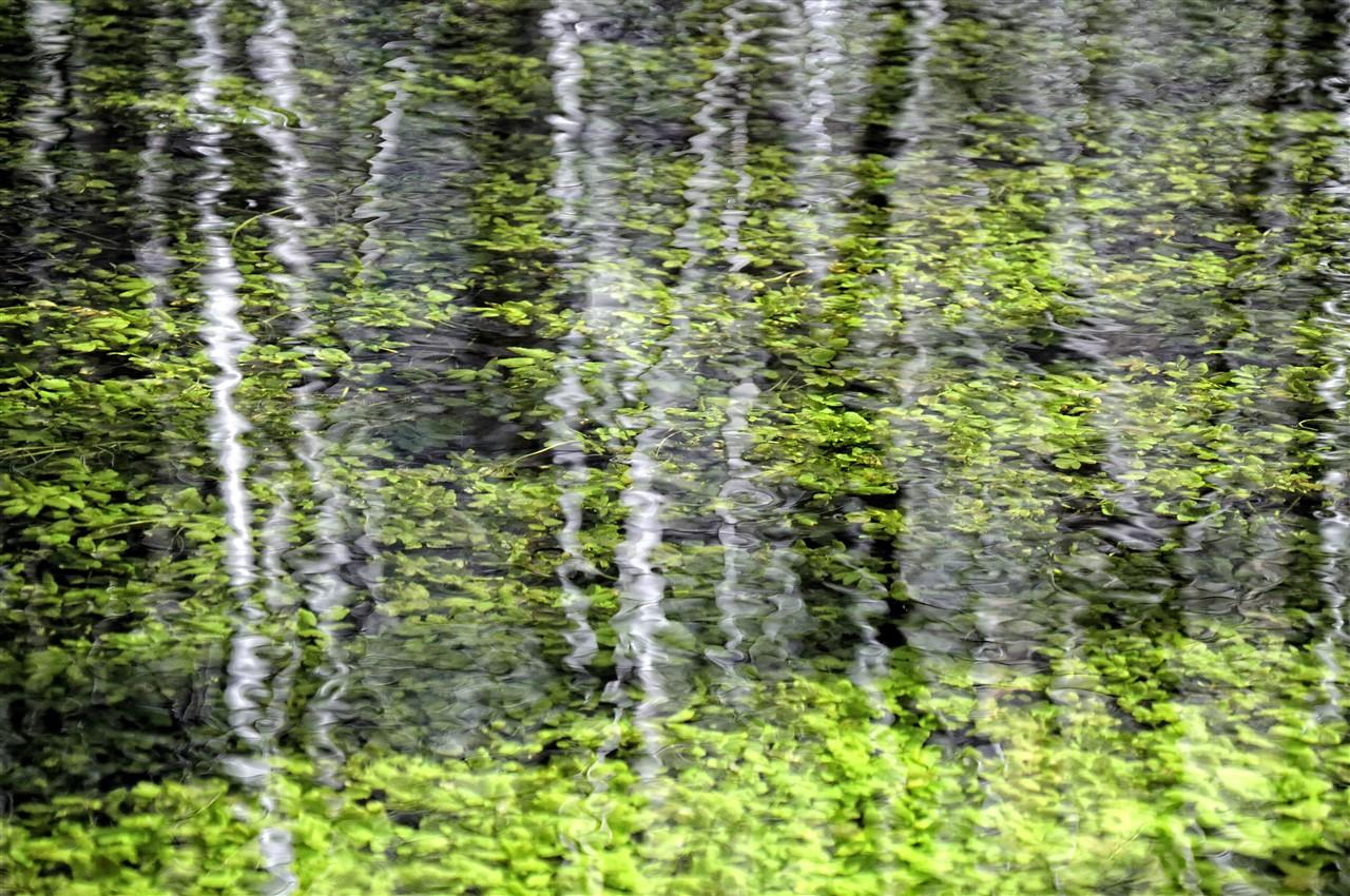 El Río Dulce de aguas cristalinas