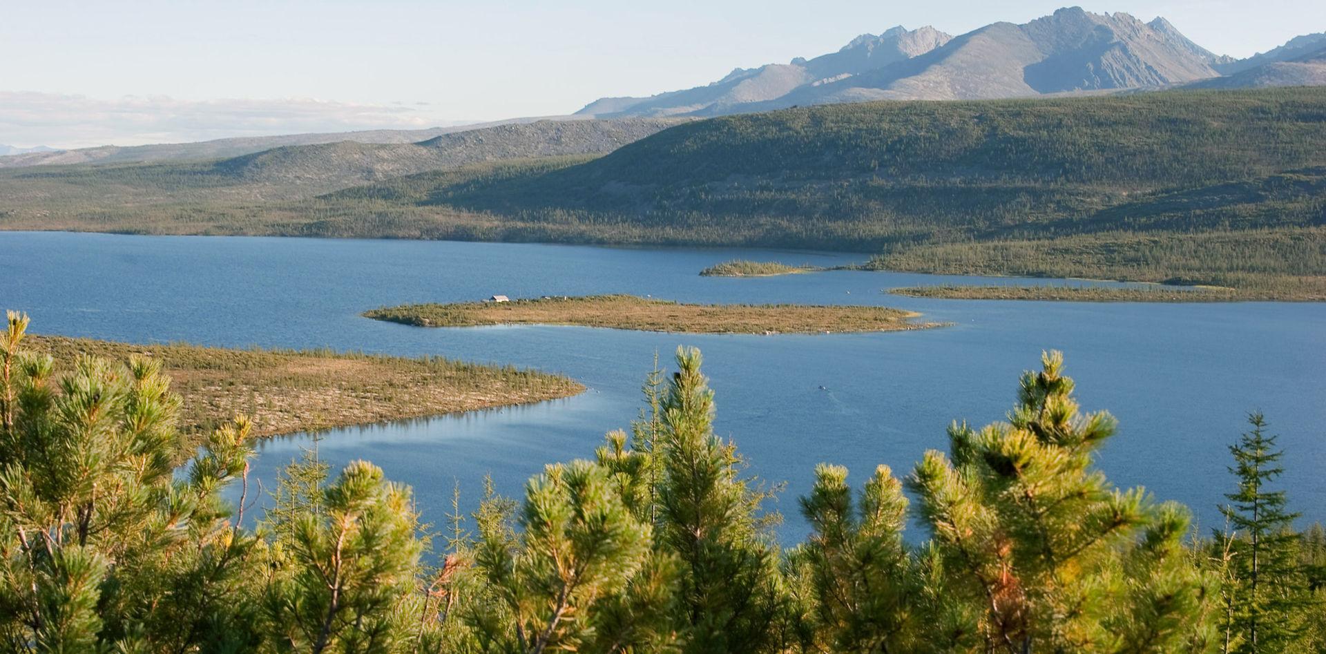 El lago Jack London, rodeado de taiga, en la región de Kolymá, Rusia. De Bartosh Dmytro, Ukraine, Kiev. http://fotostudio.com.ua - Trabajo propio, CC BY 3.0, https://commons.wikimedia.org/w/index.php?curid=9761882